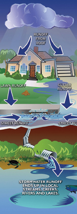 flow of stormwater from roof to river